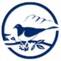 Pigeon Mountain School